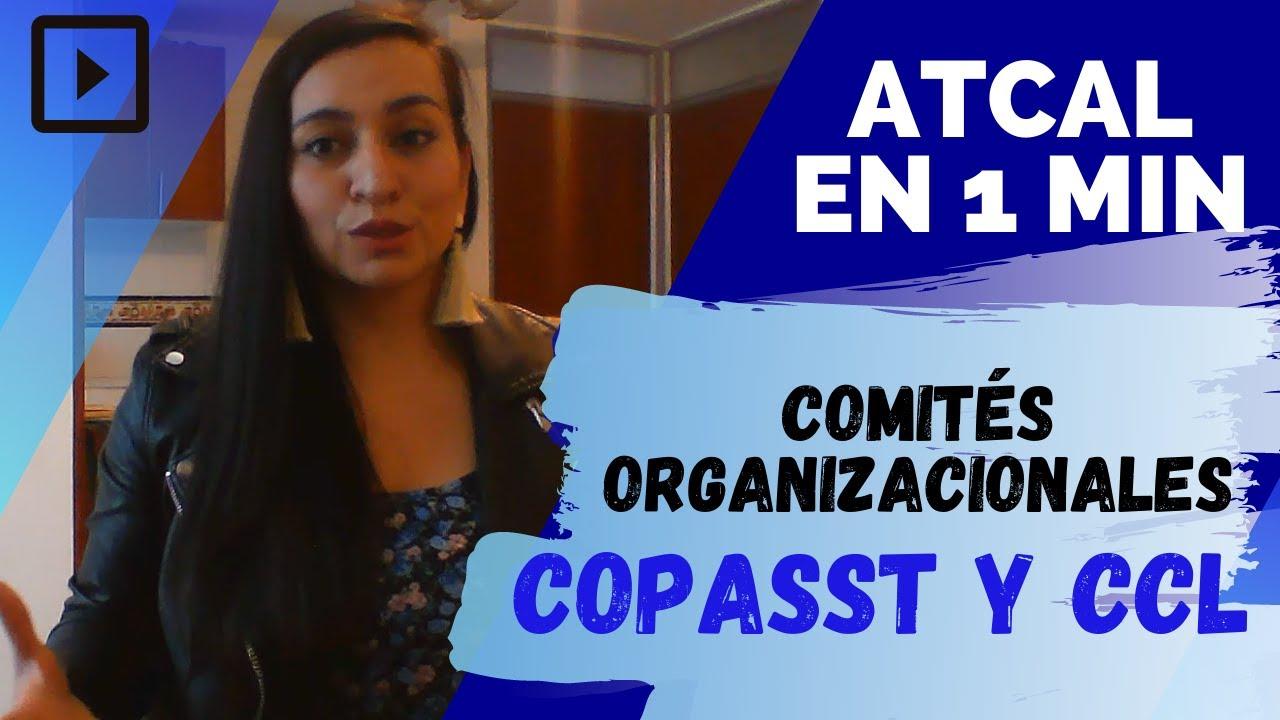 ✅Resolvamos algunas dudas acerca de los COMITÉS ORGANIZACIONALES 🕡 ¡en un minuto! 🦺